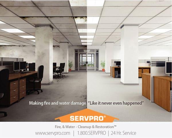 Fire Restoration Company Ad Design